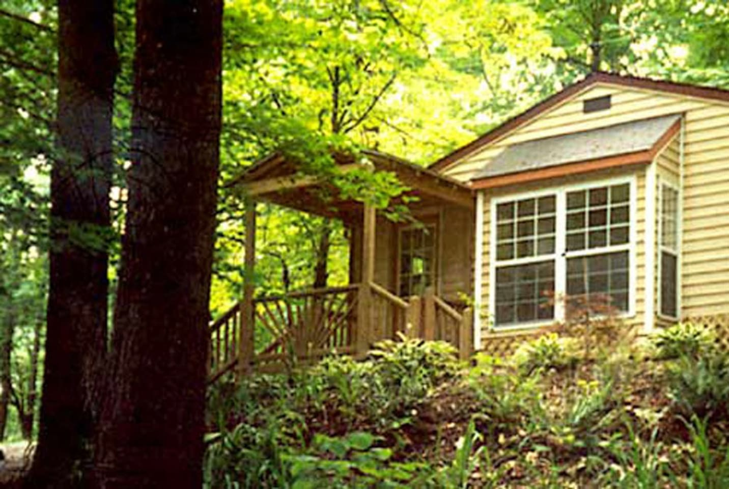 "Wild Grace Studio is nestled in the Brown County woods. The 24' x 24' room has a double bed, tables & chairs, and a ""basics"" kitchenette for your private use. The bathroom is in the house next door. An outdoor campfire area is ready for you to enjoy."