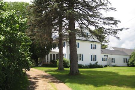 Charming historical house near beach