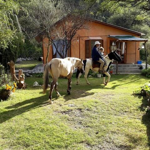 Hay posibilidad de alquilar caballos a muy bajo costo