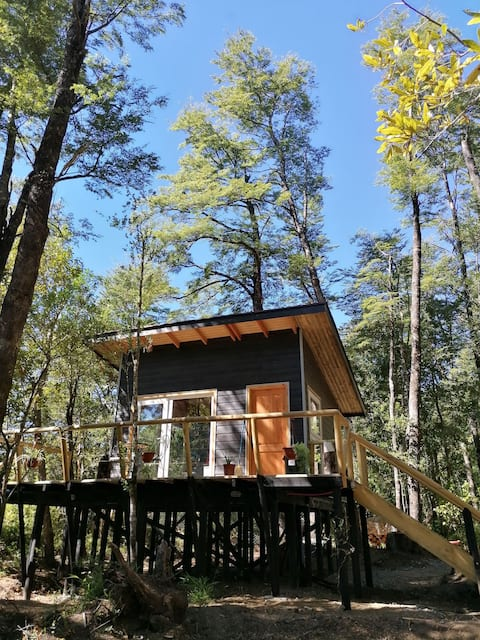 Lodge Bosque Andino
