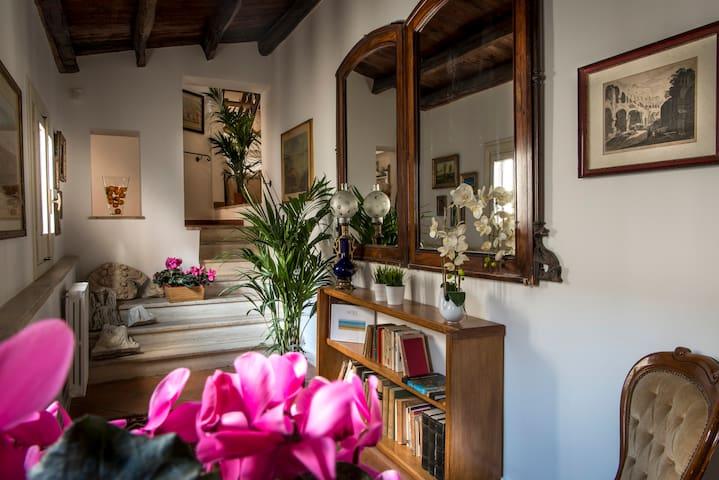Dimora torremuzza palermo appartamenti in affitto a for Appartamenti in affitto a palermo arredati