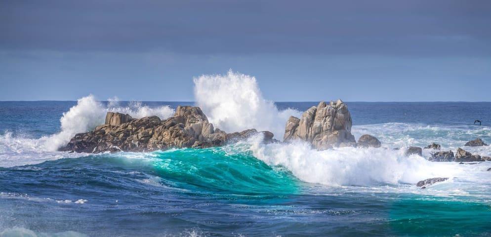 Beachy abode/Monterey/Pebble Beach/Big Sur/Carmel