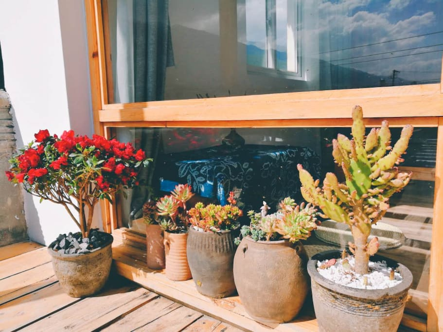 房间外的独立小阳台