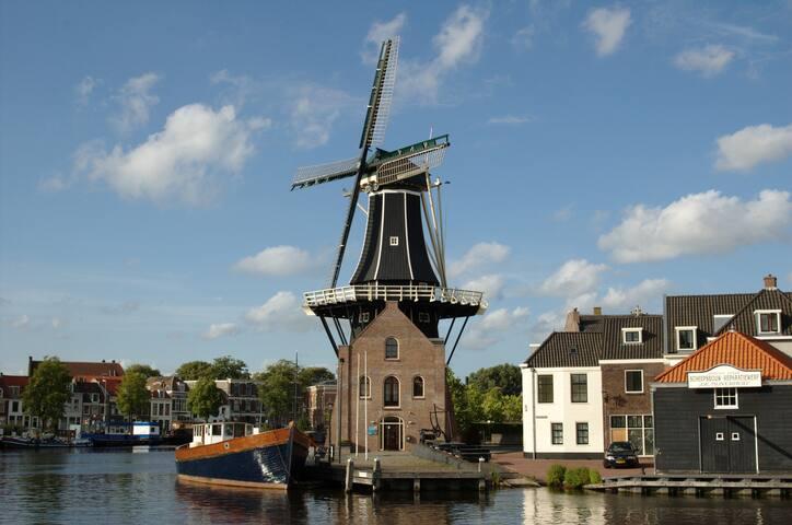 Haarlem (71km. vanaf Opperdoes): molen de Adriaan