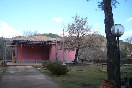 per una vacanza sull'Etna - Nicolosi