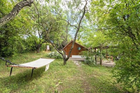 #Pinetree Cabin by halu! Villas