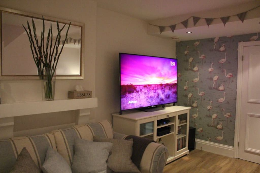 "Full Sky TV is accessible on the 65"" TV with a playstation connected.  Free Wifi is provided."