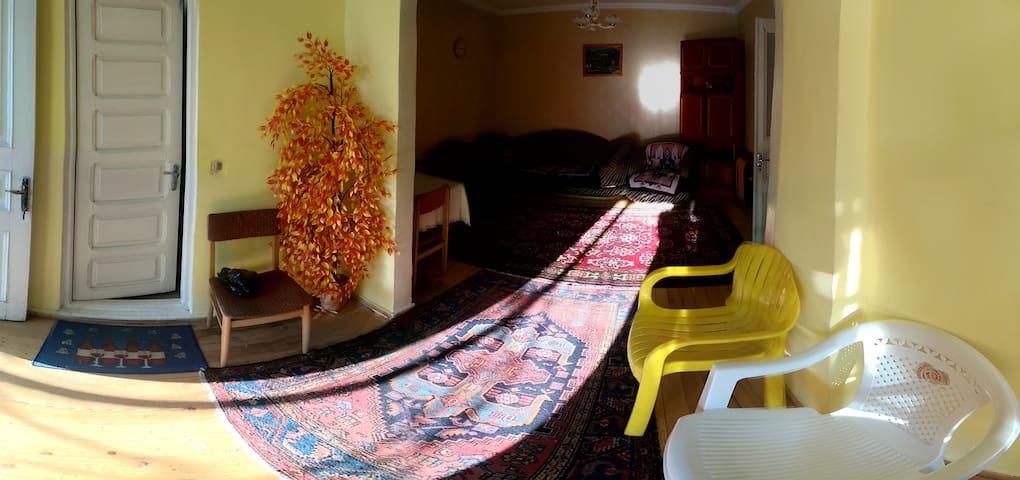Warm,wooden old styled guesthouse - Borjomi - Casa de huéspedes