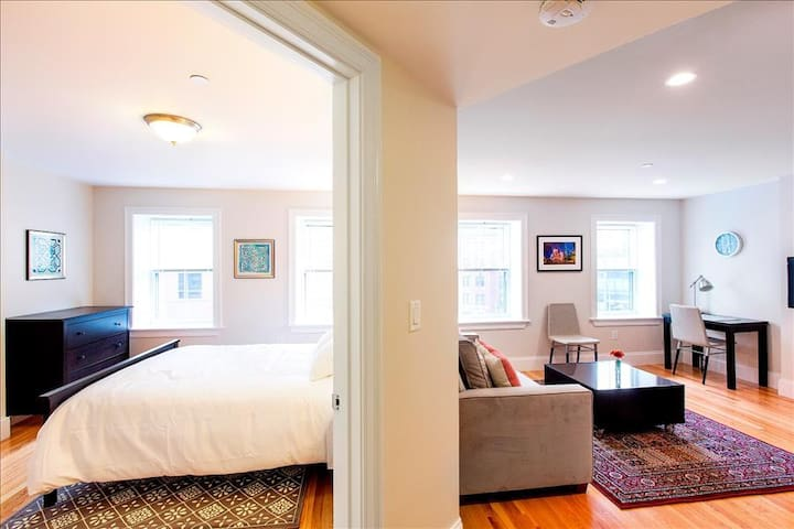 Trendy Flat|Bright + Light Southie| 1BR 1BA #201