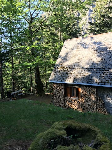Cozy Private Cabin in Triglav National Park
