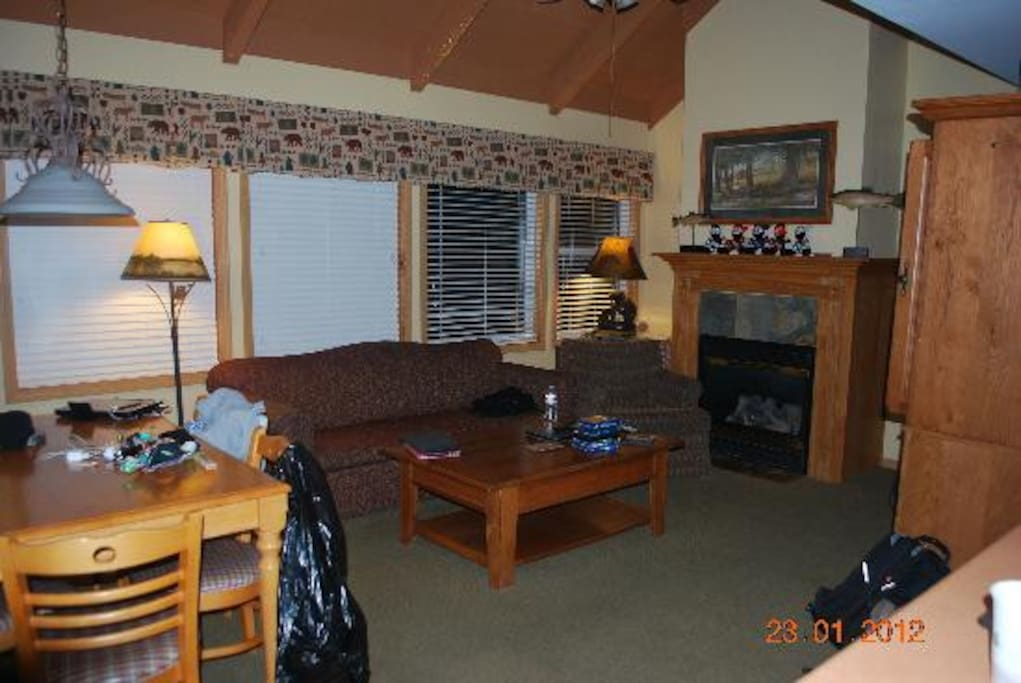 Living room w/pull out couch