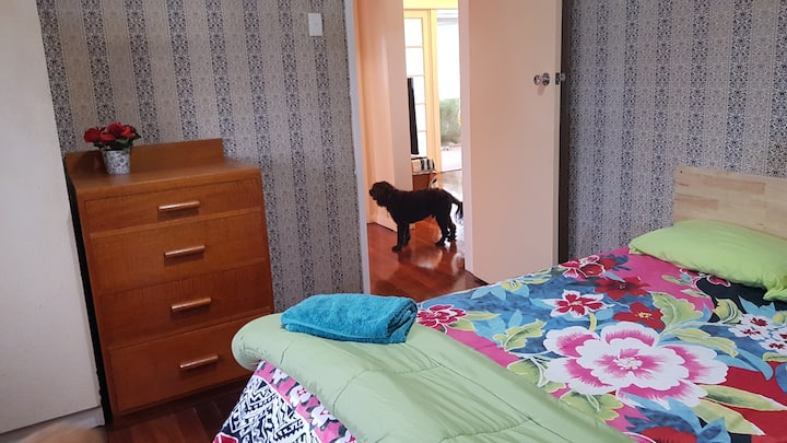 Kedron Cottage - Pet Friendly Inside -near TPCH