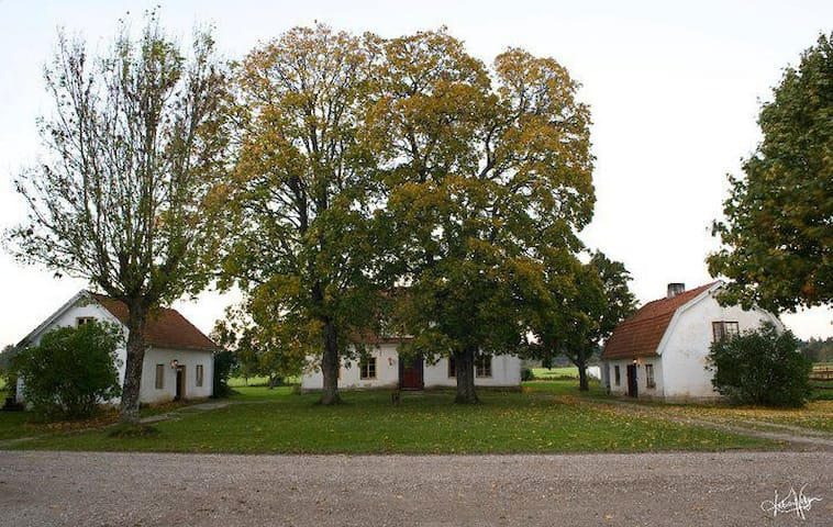 Cozy bed and breakfast on beautiful horse farm - Klintehamn - Гестхаус