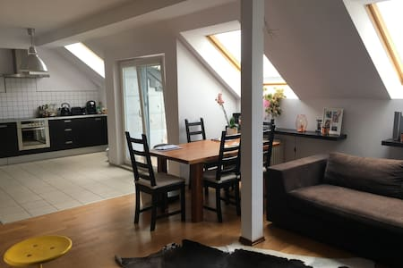Big, cozy and stylish apartment in Warsaw - Warszawa - 公寓