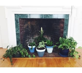 Bright & Beautiful Downtown Apartment - Gloucester - Huoneisto