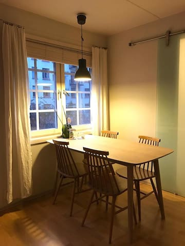 Central apartment at Frogner, Oslo - Oslo - Lägenhet