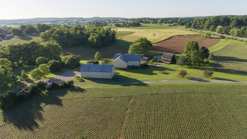 An aerial perspective of the farmhouse and part of the farm, taken in the month of June.