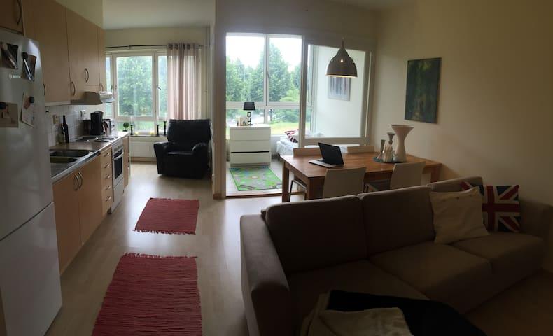 Jönköping Lägenhet (väster)