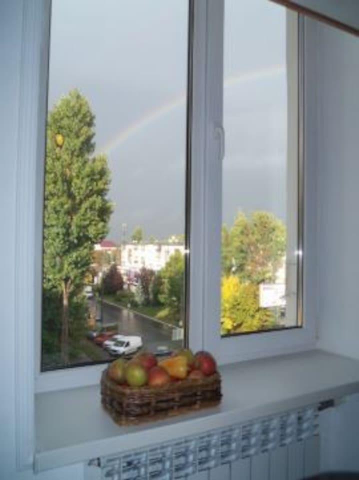 завтрак с прекрасным видом из окна заряжает энергией на весь день