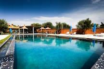 La piscine extérieure 16mx8m