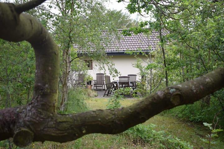 Family cottage - Egernfryd
