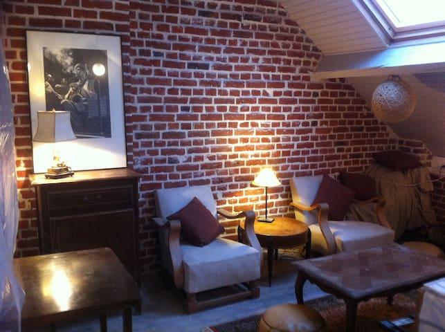 Studio Sous Les Toits Vue Basilique - Albert - Apartemen