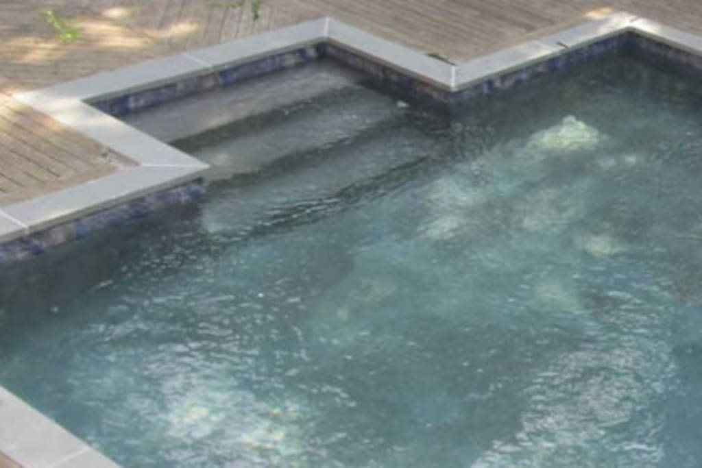 Click to see large 20x40 gunite pool