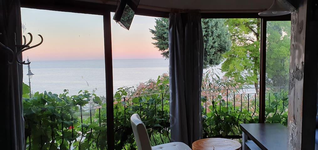 Панорамна гледка Вила Максим, Морска градина, 15