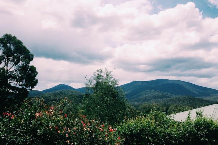Gorgeous Healesville Getaway - Healesville
