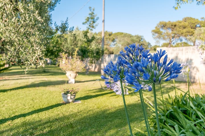 Villa Dani, casa con giardino - Arnesano - Flat