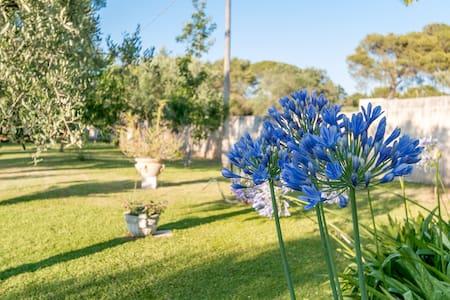Villa Dani, casa con giardino - Arnesano