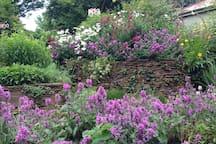 Garden (spring)