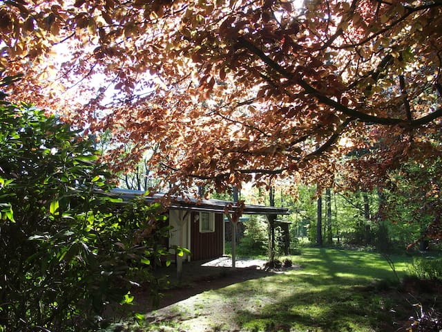 Charming Cottage in forest and close to Hamburg.