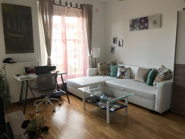 Great one bedroom apartment - Wien - Lägenhet