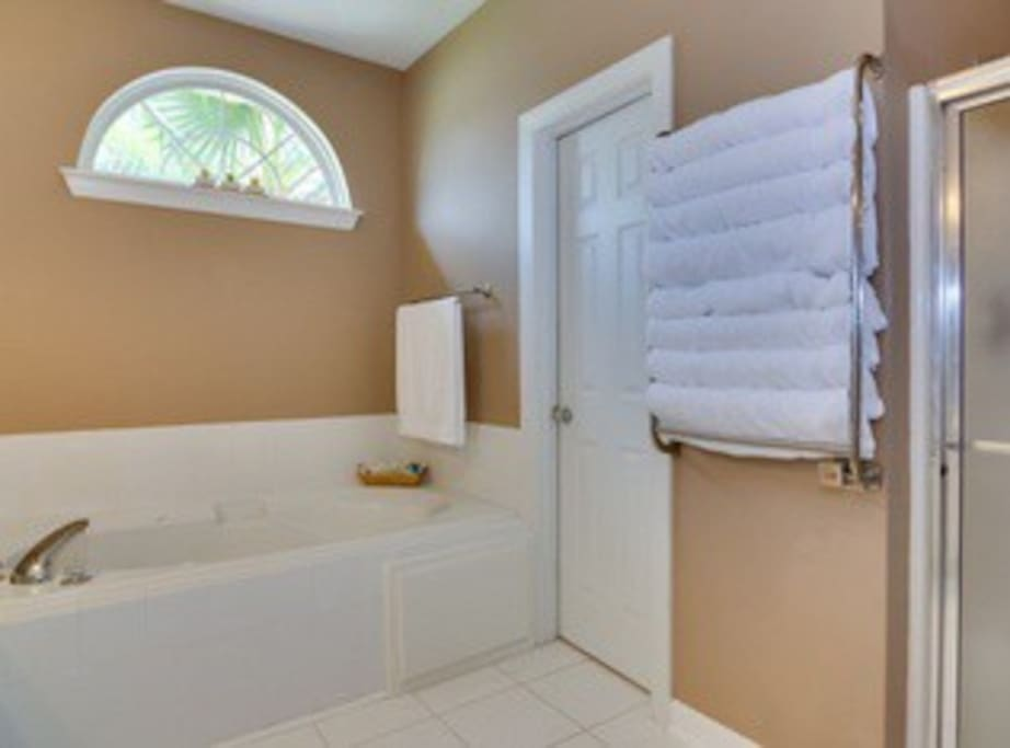 jetted tub and heated towel rack