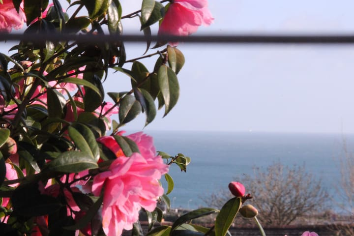 Beautiful Lodge overlooking Mounts Bay sleeps 6 - Gulval - Alojamento na natureza