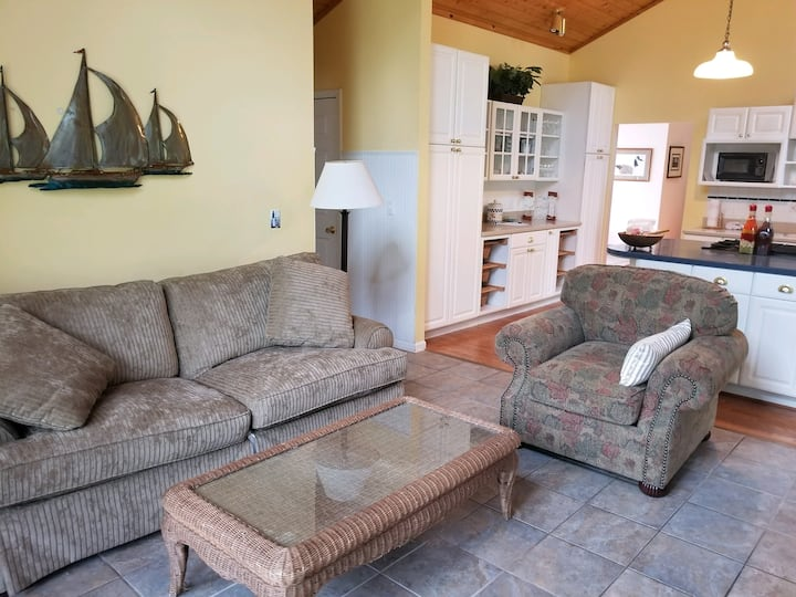 4 Bedroom House that is Steps from Castle Farms