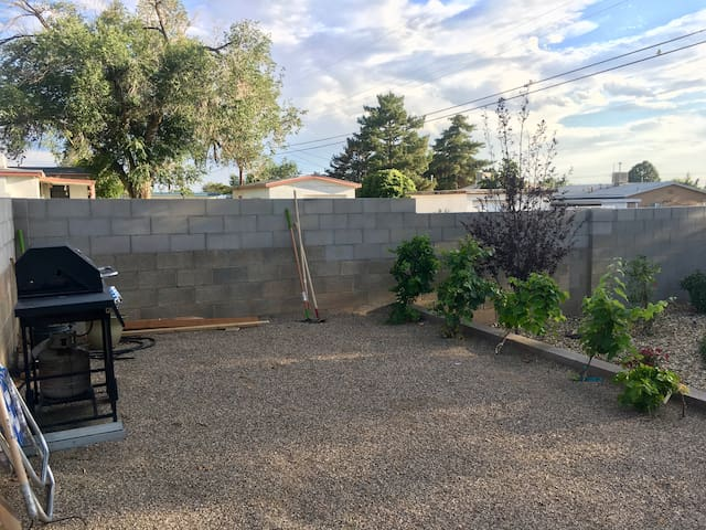 Our own personal vineyard & grill in the back yard.