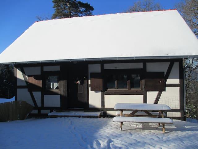 LE PETIT PAVILLON - EN PLEINE FORÊT - Saint-Hippolyte - House