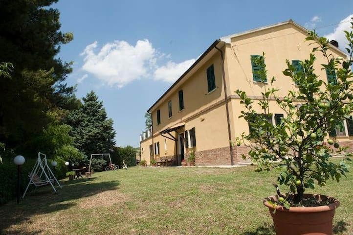 """B&B """"Campo degli Olivi"""" - Isola del Piano - อพาร์ทเมนท์"""