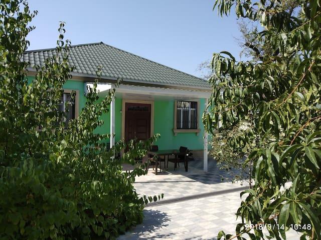 Sanny house