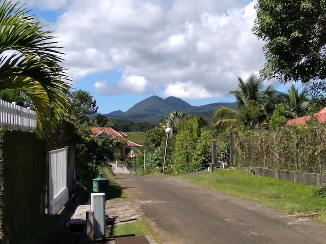 Discover National Park of Guadeloupe