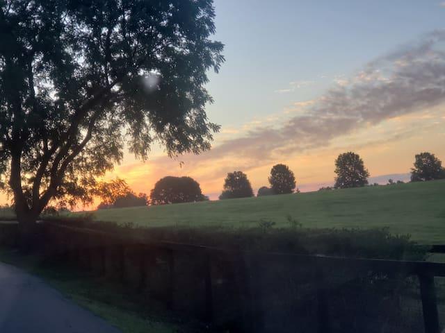 Beautiful Horse Farm Stay in Lexington