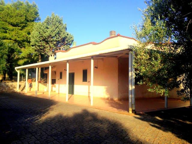 VILLA PALOMBARO - San Vito dei Normanni - อพาร์ทเมนท์