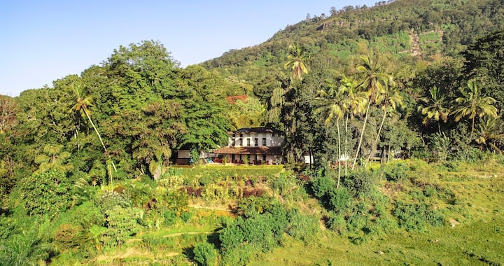 The ideal escape - 7 bedroomed manor house