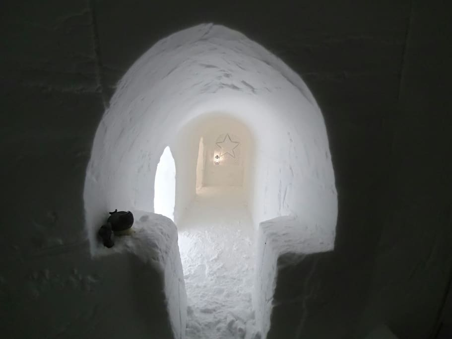 Try one night in a igloo.  A real Iglooadventure