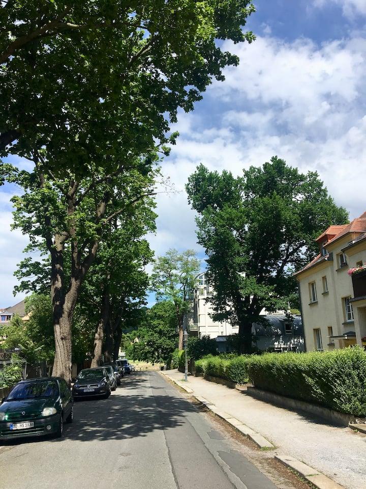 ***Schicke Wohnung Nähe Schillerplatz, bis 4 Pers