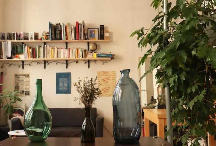 Appartement lumineux, cœur presqu'île