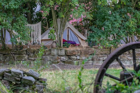 """Into the Green"" Glamping - Great Hazelnut"