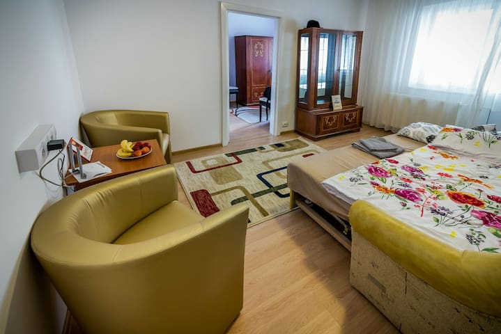 Nice quiet  apartment with a huge balcony in Sibiu